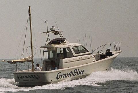 船釣り(グランブルー)