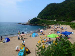 青井浜ワンワンビーチ7月10日(火)~営業再開オープン