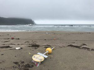 第8回竹野浜オープンウォータースイミング大会 中止のお知らせ